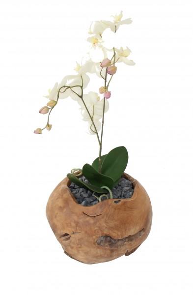 Teak Dekokugel (Lieferung ohne Blumendeko)